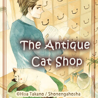 The Antique Cat Shop
