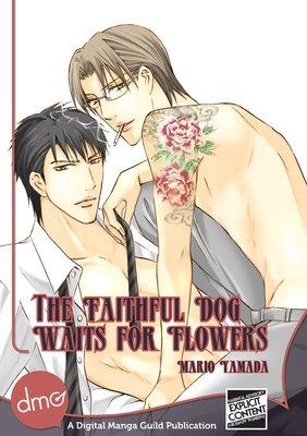 The Faithful Dog Waits for Flowers