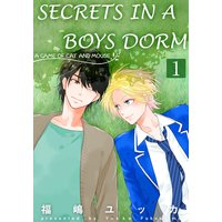 Secrets in a Boys Dorm -A Game of Cat and Mouse-
