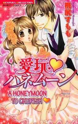 A Honeymoon to Cherish