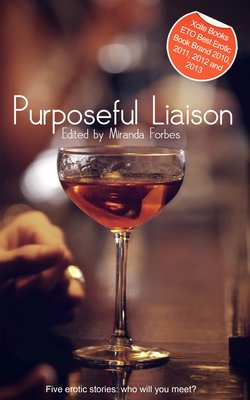 Purposeful Liaison - A Collection of Five Erotic Stories
