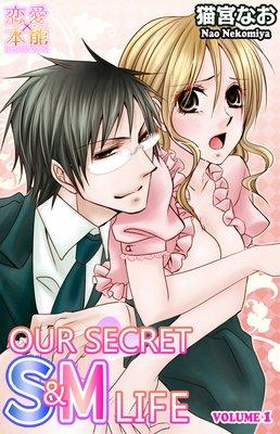 Our Secret S&M Life