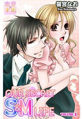 Our Secret S&M Life (3)