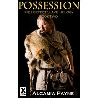 Possession - The Perfect Slave Trilogy - Book Two