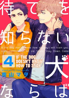 If the Dog Doesn't Know How to Stay (4)