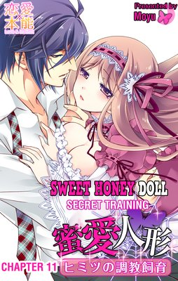 Sweet Honey Doll -Secret Training- (11)
