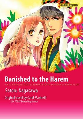Banished to the Harem