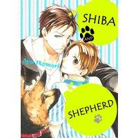 Shiba and Shepherd