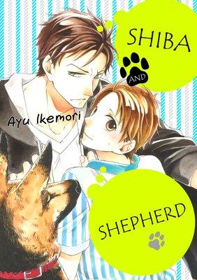 Shiba and Shepherd (5)