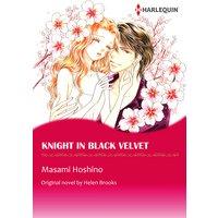 Knight in Black Velvet