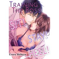 Training the Boss -Sit! Stay! Heel!-