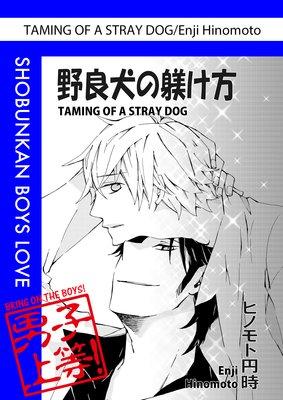 Taming of a Stray Dog